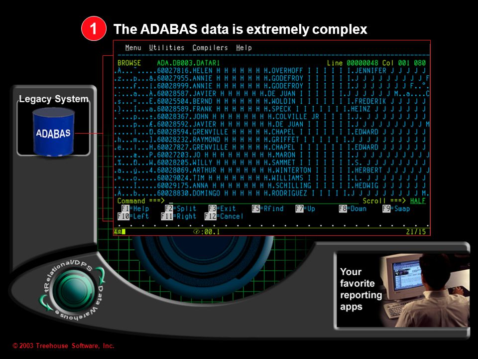 © 2003 Treehouse Software, Inc. We analyze, model, map, materialize, and propagate ADABAS data 2