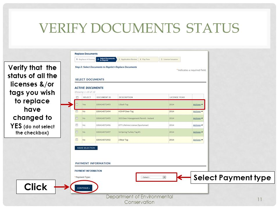 VERIFY DOCUMENTS STATUS Department of Environmental Conservation 11 Verify that the status of all the licenses &/or tags you wish to replace have changed to YES (do not select the checkbox) Click Select Payment type