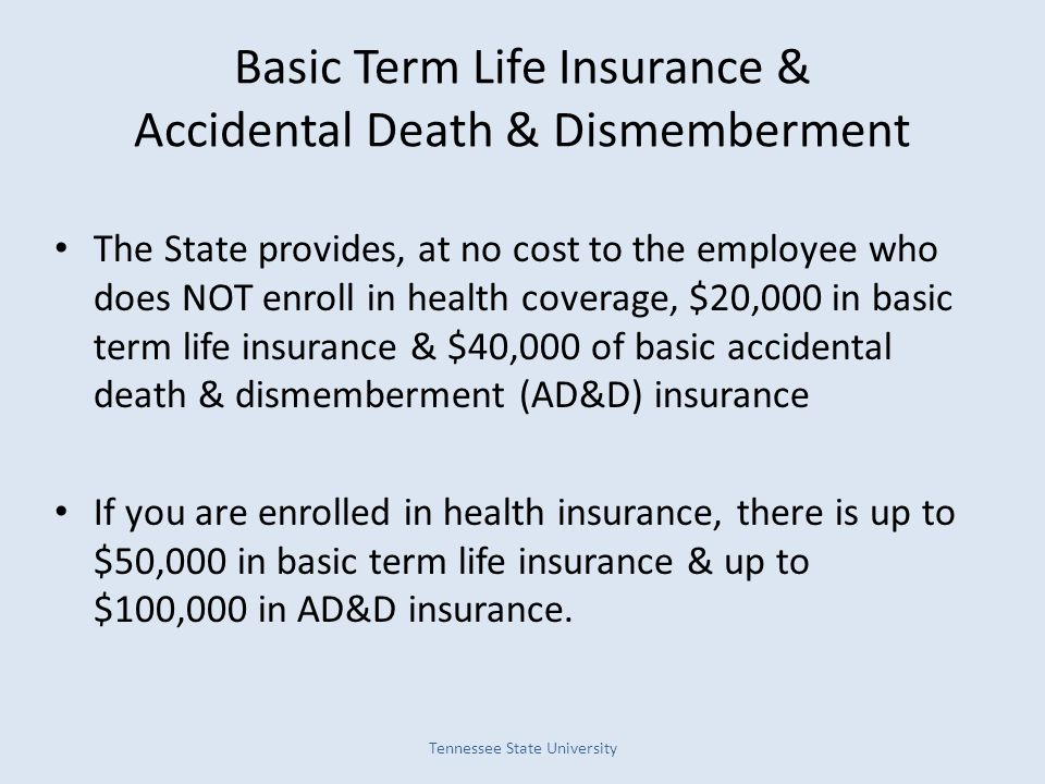 Basic Term Life Insurance & Accidental Death & Dismemberment The State provides, at no cost to the employee who does NOT enroll in health coverage, $2