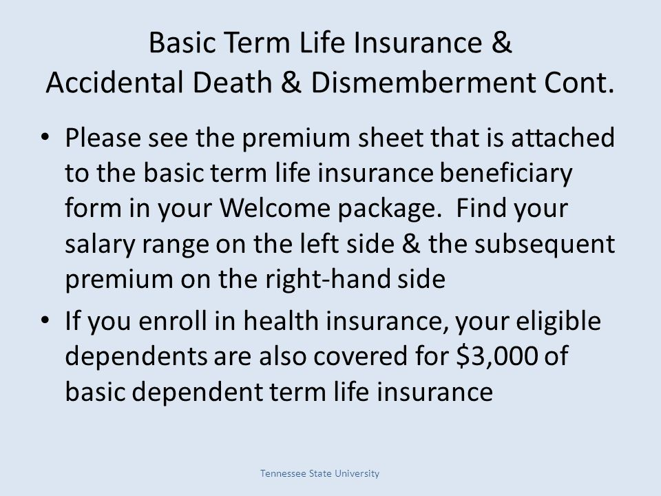 Basic Term Life Insurance & Accidental Death & Dismemberment Cont.
