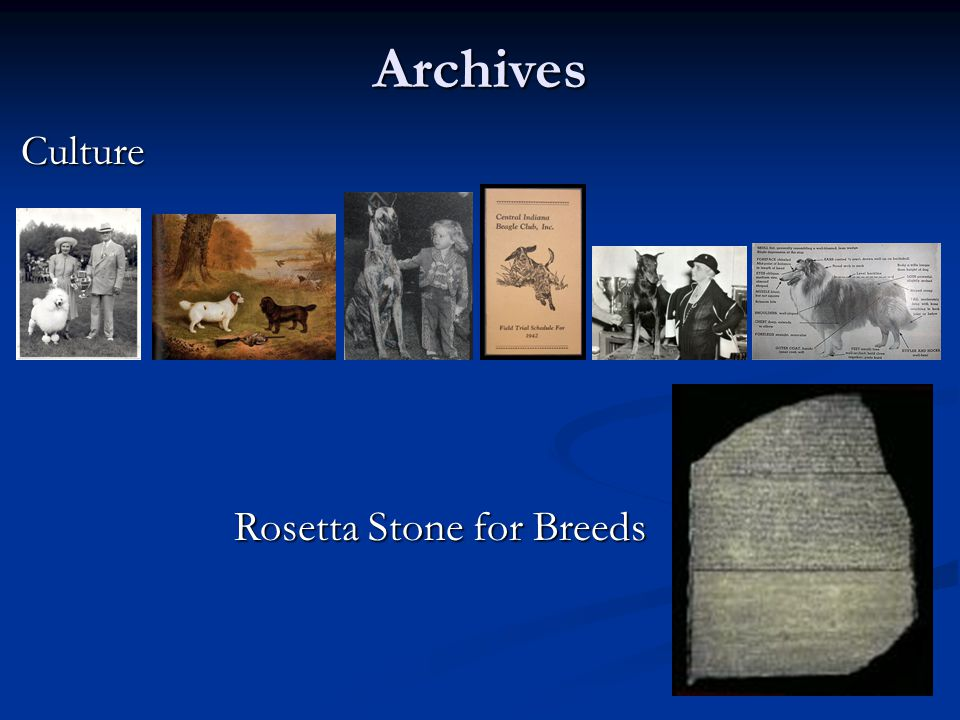 Rosetta Stone for Breeds Archives