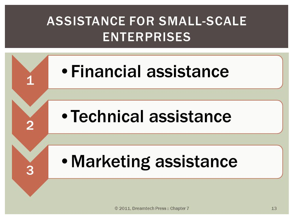 1 Financial assistance 2 Technical assistance 3 Marketing assistance ASSISTANCE FOR SMALL-SCALE ENTERPRISES © 2011, Dreamtech Press :: Chapter 7 13