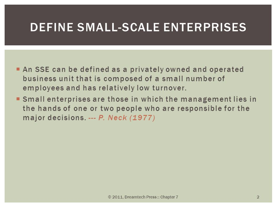  An SSE can be defined as a privately owned and operated business unit that is composed of a small number of employees and has relatively low turnove