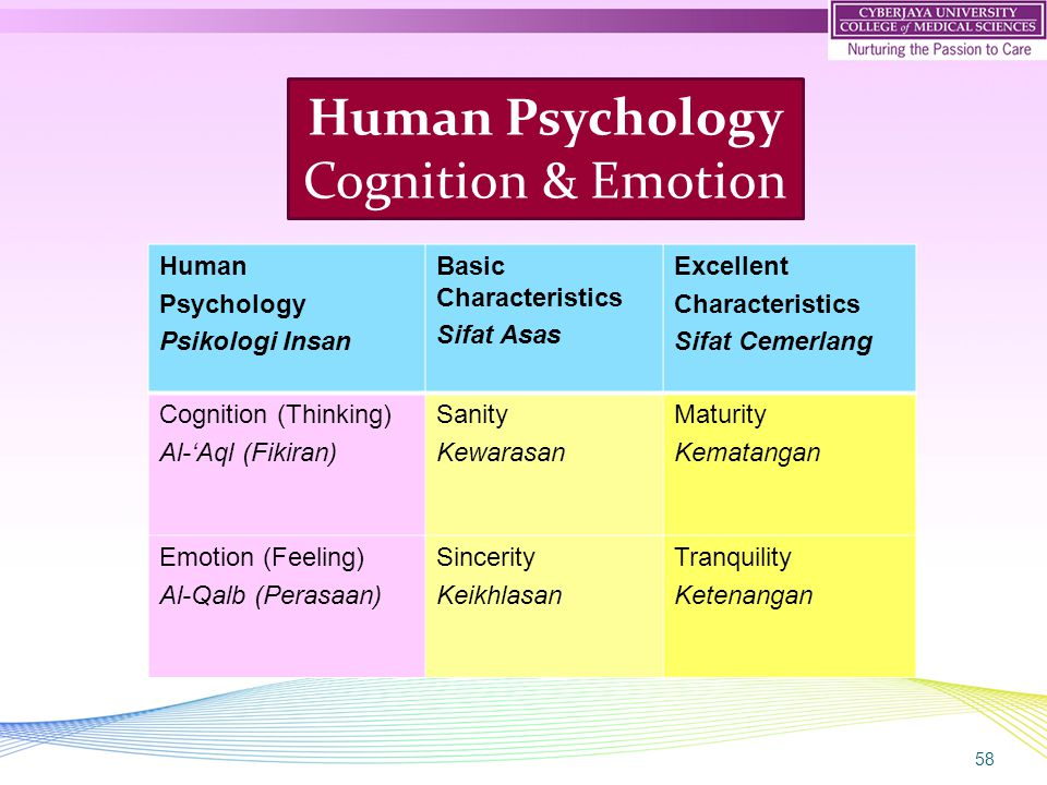 58 Human Psychology Cognition & Emotion Human Psychology Psikologi Insan Basic Characteristics Sifat Asas Excellent Characteristics Sifat Cemerlang Co