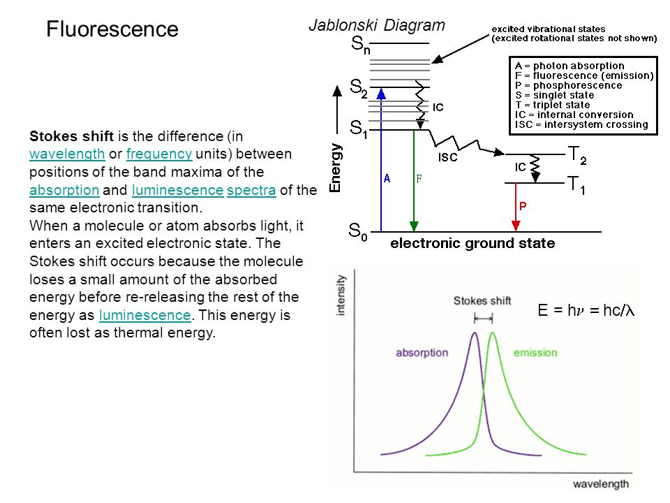 FRET: Fluorescence Resonance Energy Transfer Quenching: Energy Transfer: Rate: k t =  d -1 (R o /R) 6 k t =rate of rxn  d =lifetime of donor R=distance between fluorophores R o =Förster distance Förster distance R o =(  2 *J( )*n -4 *Q) 1/6 *9.7*10 2 J( ) =overlap integral  2 =transition dipoles of fluorophores n=refractive index of medium Q=quantum yield % transfer = Efficiency (E): Quenching: E= 1-(I/I o ) Energy Transfer: E=(  ad ( 1)/  da ( 1))*[(I ad ( 2)/I a ( 2))-1] I=intensity with FRET I o =intenstiy without FRET  ad =absorption of accepter (with donor)  da =absorption of donor (with acceptor)