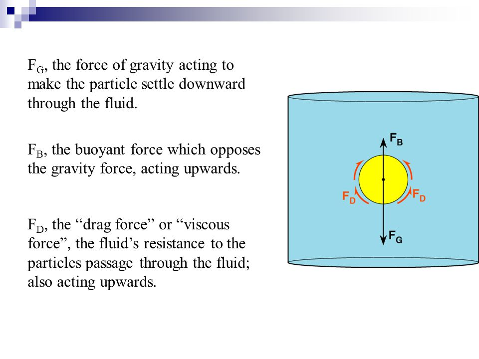 F G, the force of gravity acting to make the particle settle downward through the fluid. F B, the buoyant force which opposes the gravity force, actin