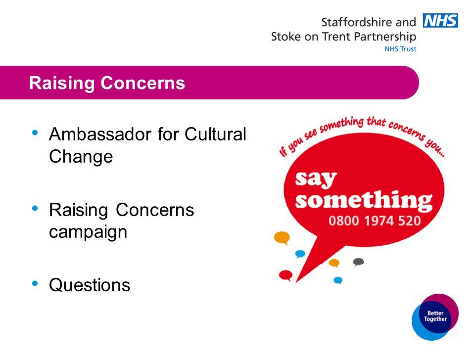 Raising Concerns Ambassador for Cultural Change Raising Concerns campaign Questions