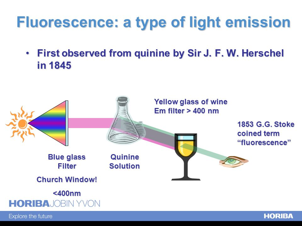 Common Fluorophores Typically, Aromatic molecules –Quinine, ex 350/em 450 –Fluorescein, ex 485/520 –Rhodamine B, ex 550/570 –POPOP, ex 360/em 420 –Coumarin, ex 350/em 450 –Acridine Orange, ex 330/em 500