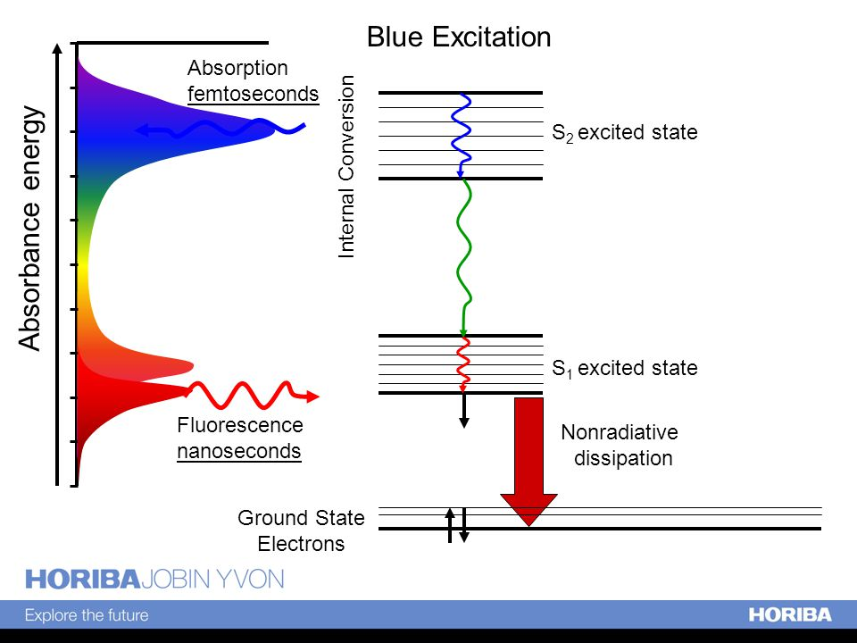 Ground State Electrons S 1 excited state S 2 excited state Absorbance energy Fluorescence nanoseconds Absorption femtoseconds Nonradiative dissipation Blue Excitation Internal Conversion