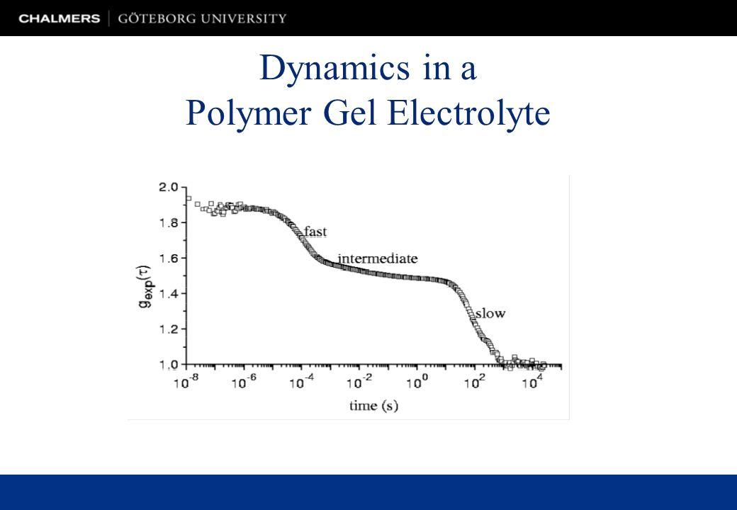 Dynamics in a Polymer Gel Electrolyte
