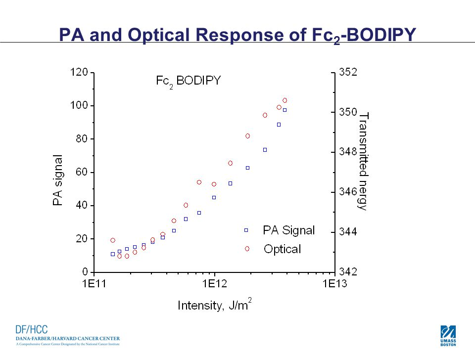 PA and Optical Response of Fc 2 -BODIPY
