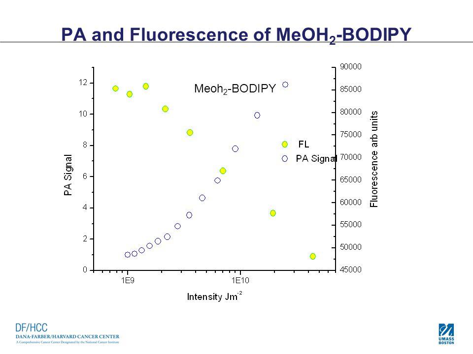 PA and Fluorescence of MeOH 2 -BODIPY Meoh 2 -BODIPY