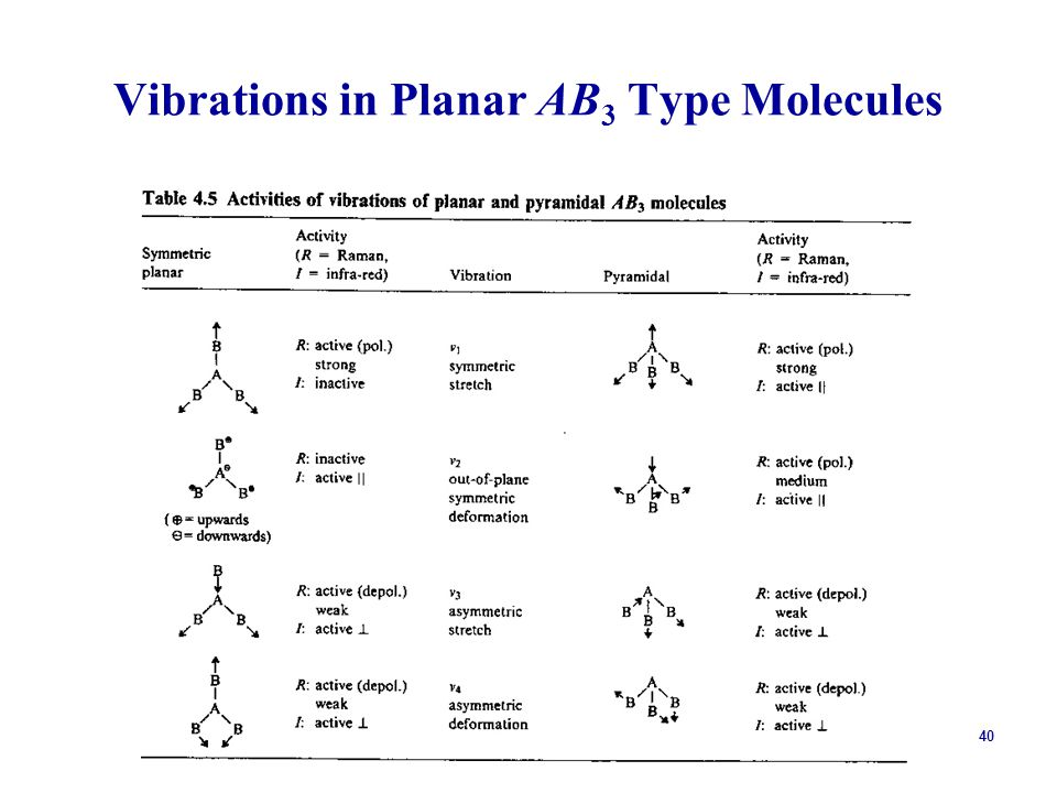 40 Vibrations in Planar AB 3 Type Molecules
