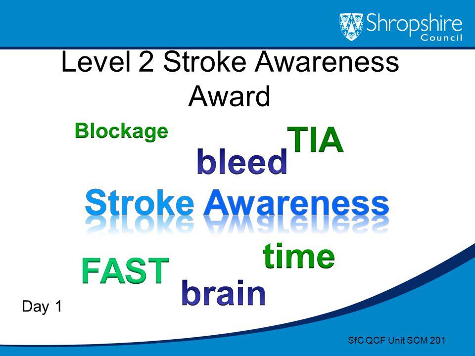 Level 2 Stroke Awareness Award Day 1 SfC QCF Unit SCM 201