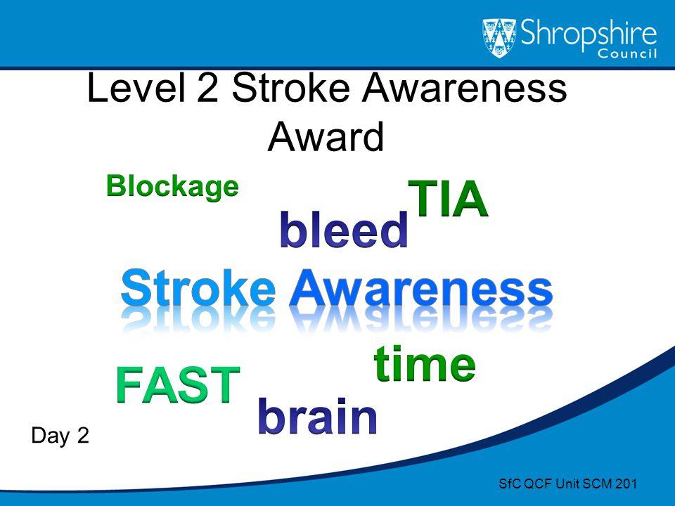 Level 2 Stroke Awareness Award Day 2 SfC QCF Unit SCM 201