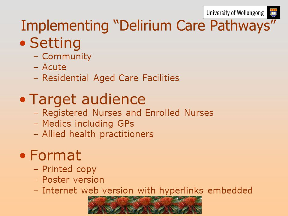 Implementing Delirium Care Pathways Setting –Community –Acute –Residential Aged Care Facilities Target audience –Registered Nurses and Enrolled Nurses –Medics including GPs –Allied health practitioners Format –Printed copy –Poster version –Internet web version with hyperlinks embedded