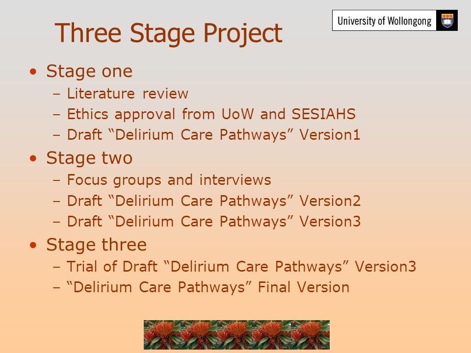 Three Stage Project Stage one –Literature review –Ethics approval from UoW and SESIAHS –Draft Delirium Care Pathways Version1 Stage two –Focus groups and interviews –Draft Delirium Care Pathways Version2 –Draft Delirium Care Pathways Version3 Stage three –Trial of Draft Delirium Care Pathways Version3 – Delirium Care Pathways Final Version