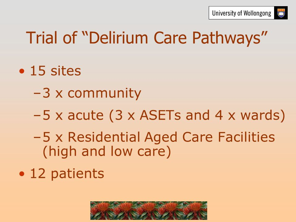 Trial of Delirium Care Pathways 15 sites –3 x community –5 x acute (3 x ASETs and 4 x wards) –5 x Residential Aged Care Facilities (high and low care) 12 patients