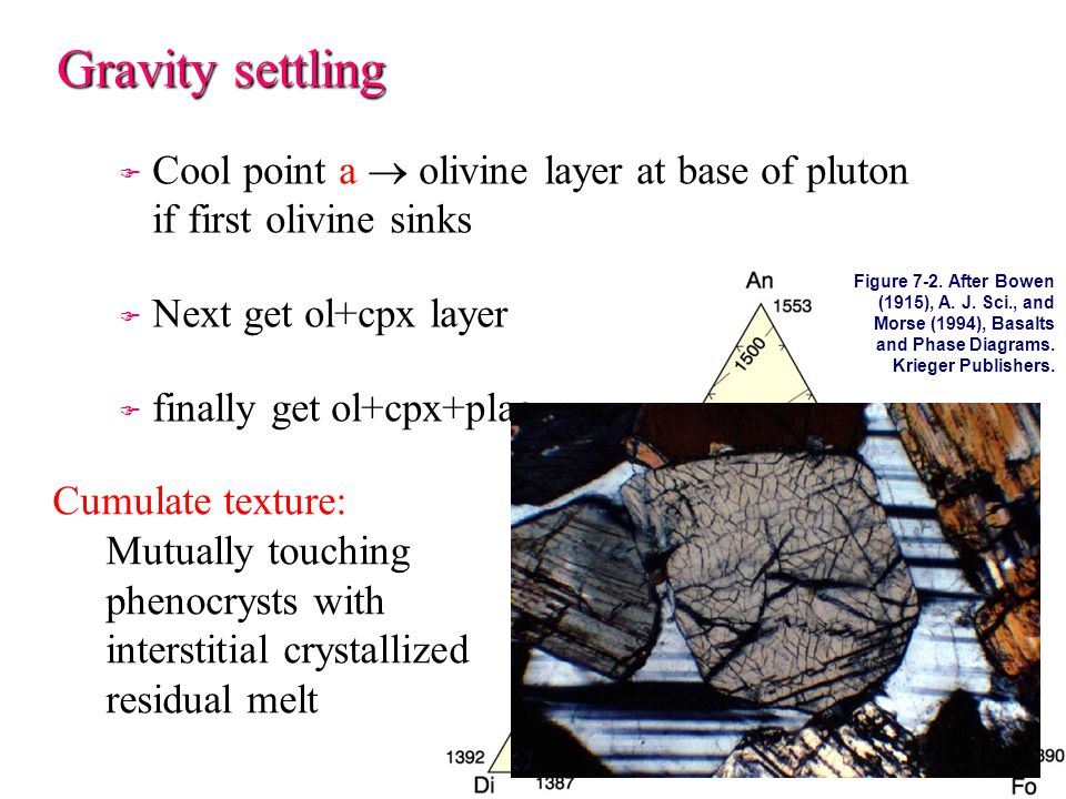 Gravity settling F F Cool point a  olivine layer at base of pluton if first olivine sinks F F Next get ol+cpx layer F F finally get ol+cpx+plag Cumulate texture: Mutually touching phenocrysts with interstitial crystallized residual melt Figure 7-2.