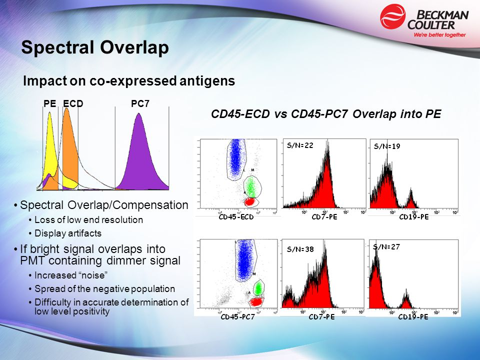 Spectral Overlap/Compensation Loss of low end resolution Display artifacts If bright signal overlaps into PMT containing dimmer signal Increased noise Spread of the negative population Difficulty in accurate determination of low level positivity PEECDPC7 CD45-ECD vs CD45-PC7 Overlap into PE Impact on co-expressed antigens Spectral Overlap