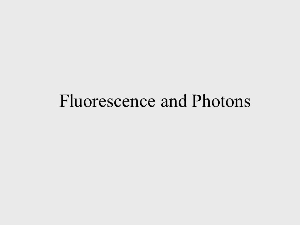 Fluorescence and Photons