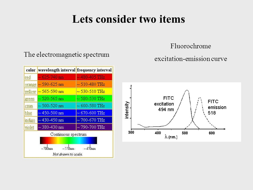 Lets consider two items The electromagnetic spectrum Fluorochrome excitation-emission curve
