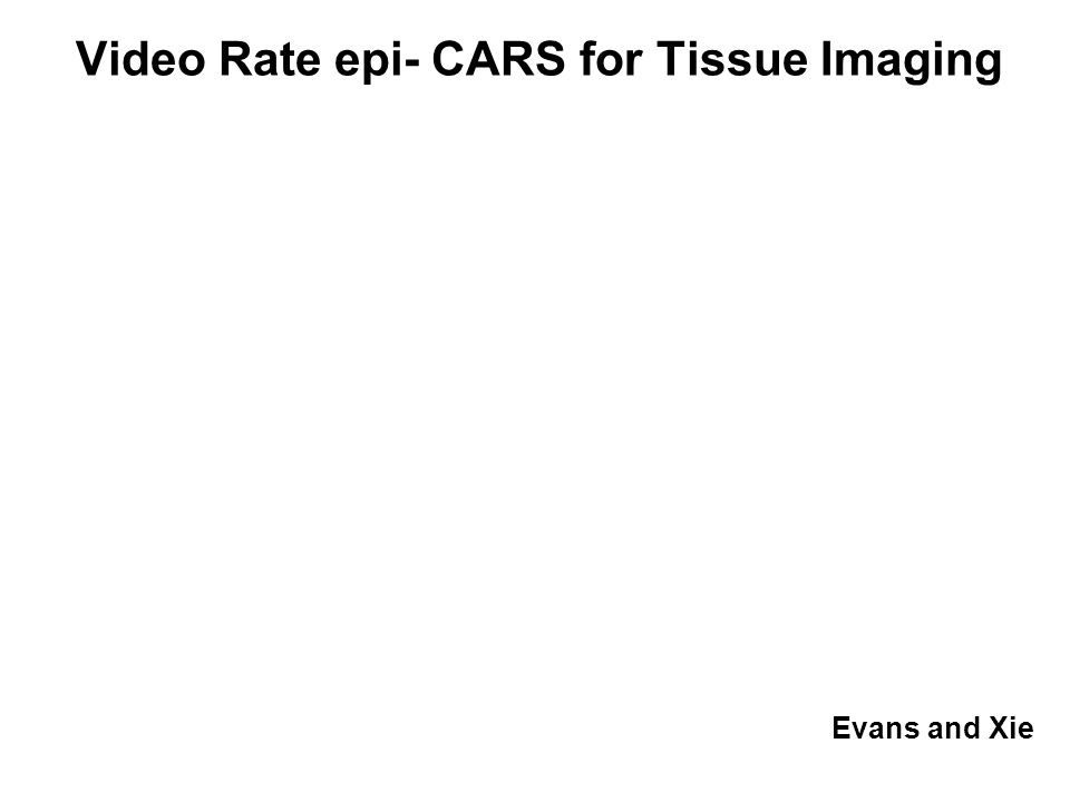 Evans and Xie Video Rate epi- CARS for Tissue Imaging