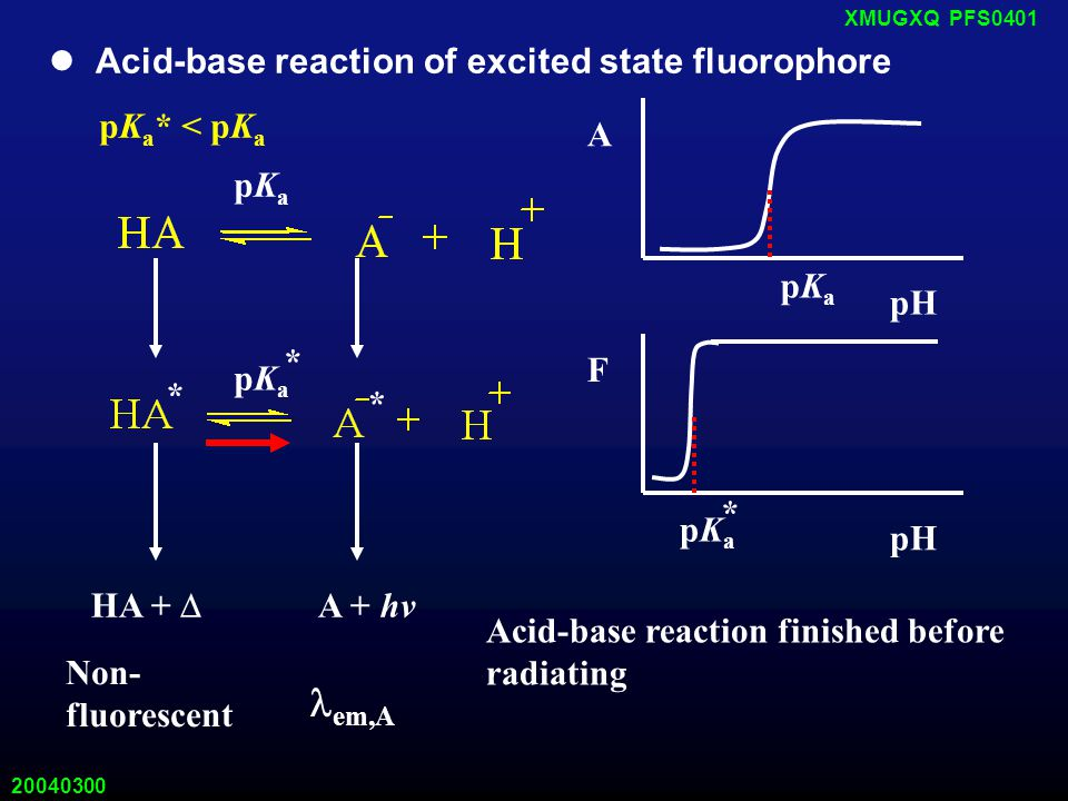20040300 XMUGXQ PFS0401 Acid-base reaction of excited state fluorophore pK a * < pK a pKapKa * * HA +  A + hv em,A Non- fluorescent A pH pKapKa * pKapKa Acid-base reaction finished before radiating pKapKa * F pH