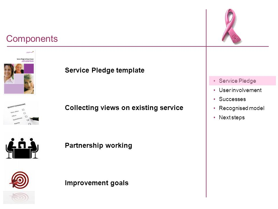 Service Pledge User involvement Successes Recognised model Next steps Service Pledge standards Department of Health guidance Clinical guidelines Patient views Service Pledge Advisory Group Local standards