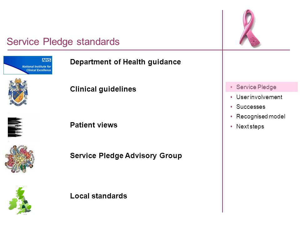 Service Pledge User involvement Successes Recognised model Next steps Service Pledge standards Department of Health guidance Clinical guidelines Patie