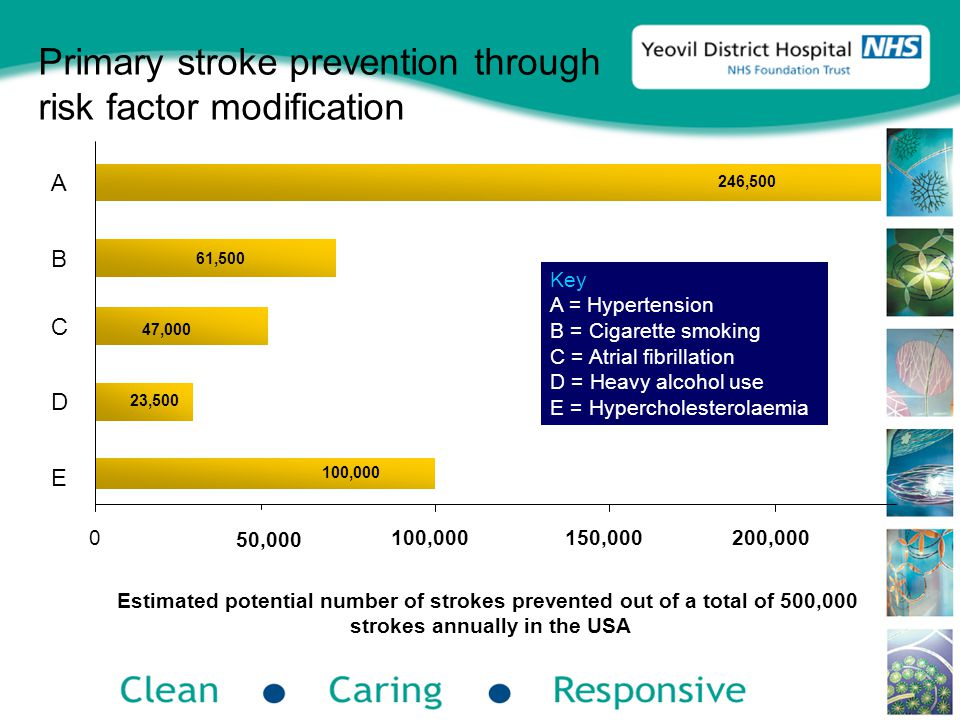 Primary stroke prevention through risk factor modification 50,000 100,000 47,000 23,500 61,500 246,500 Estimated potential number of strokes prevented out of a total of 500,000 strokes annually in the USA Key A = Hypertension B = Cigarette smoking C = Atrial fibrillation D = Heavy alcohol use E = Hypercholesterolaemia 0100,000150,000200,000 A B C D E