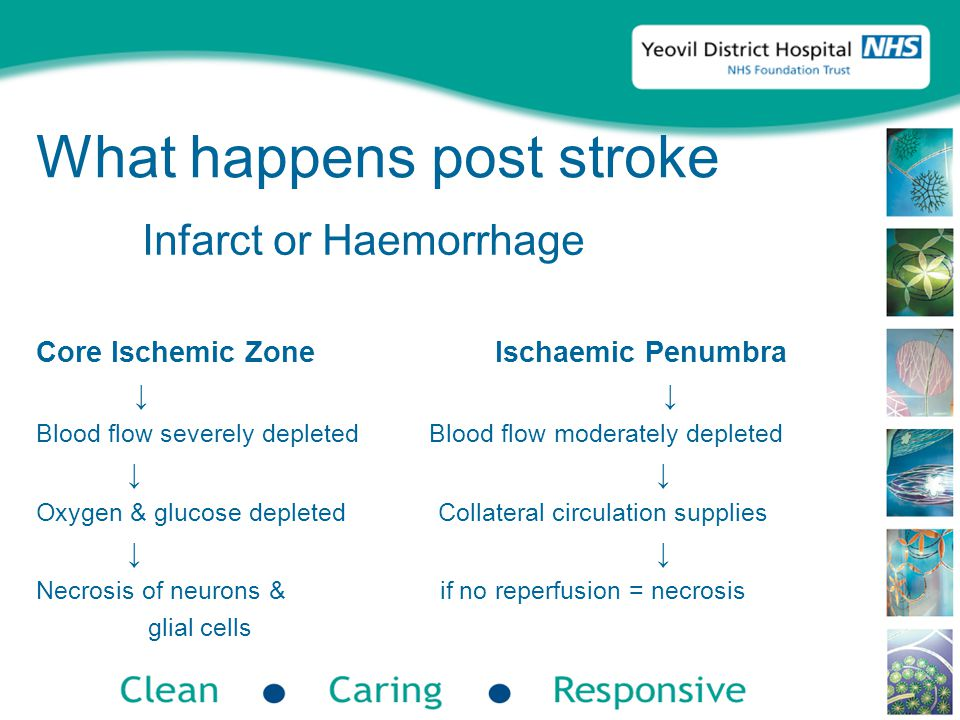 Summary Stroke is becoming a greater problem – increased costs with relatively poor outcomes Early diagnosis & treatment is essential CT scans can give false normal results Identification of underlying cause is not always possible Not just what happens to the elderly Now is the time for stroke – there is £££