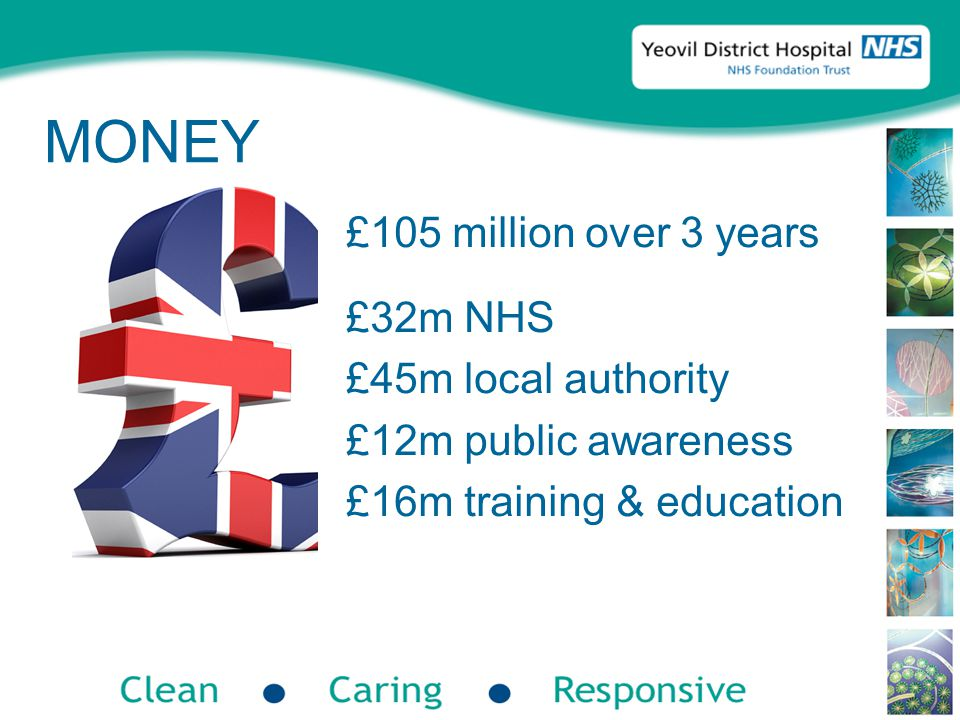 MONEY £105 million over 3 years £32m NHS £45m local authority £12m public awareness £16m training & education