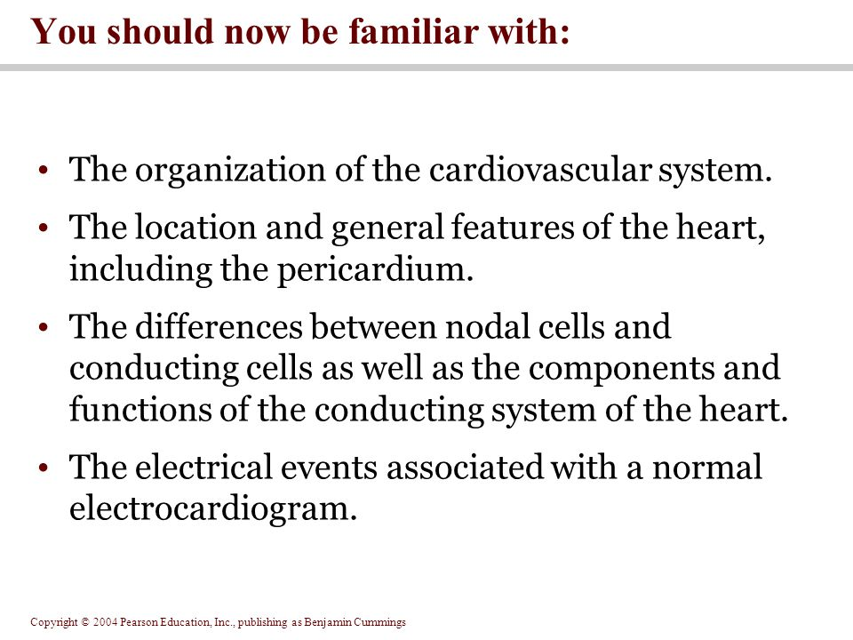 Copyright © 2004 Pearson Education, Inc., publishing as Benjamin Cummings The organization of the cardiovascular system. The location and general feat