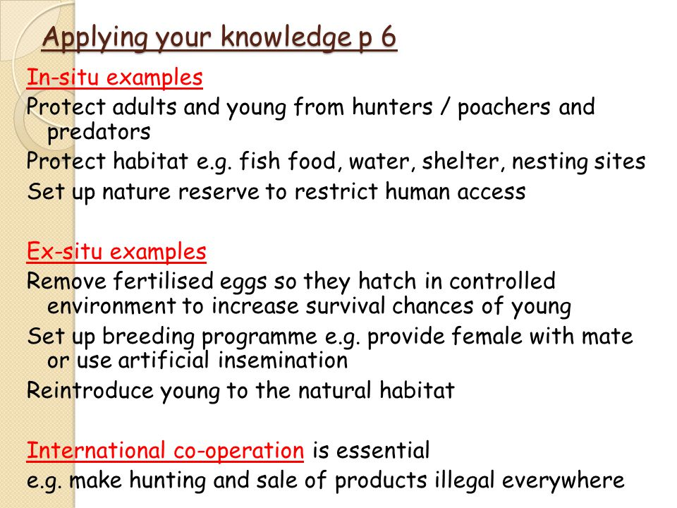 Applying your knowledge p 6 In-situ examples Protect adults and young from hunters / poachers and predators Protect habitat e.g.