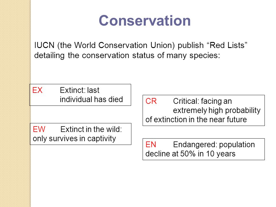 IUCN (the World Conservation Union) publish Red Lists detailing the conservation status of many species: EXExtinct: last individual has died EWExtinct in the wild: only survives in captivity CRCritical: facing an extremely high probability of extinction in the near future ENEndangered: population decline at 50% in 10 years Conservation