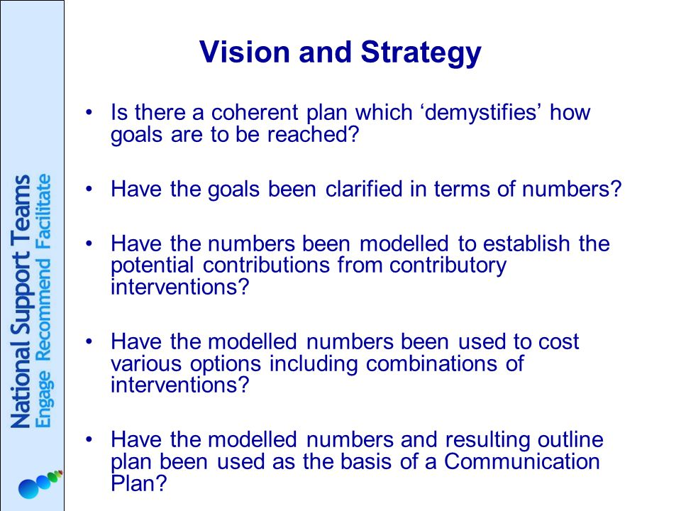 Vision and Strategy Is there a coherent plan which 'demystifies' how goals are to be reached.