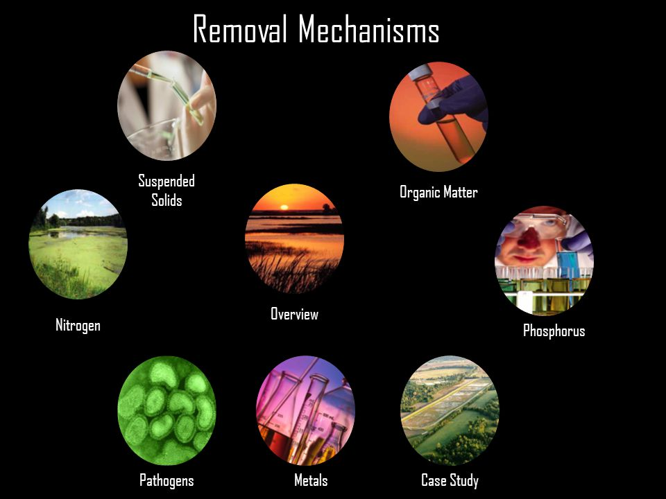 Removal Mechanisms Suspended Solids Organic Matter Nitrogen Phosphorus Case Study Overview PathogensMetals