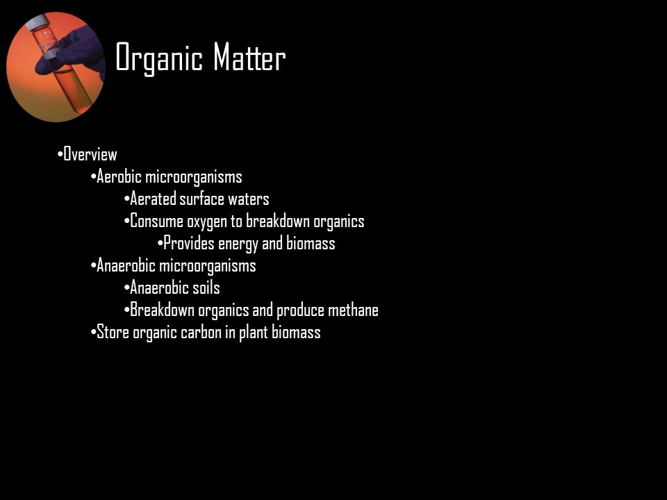 Organic Matter Overview Aerobic microorganisms Aerated surface waters Consume oxygen to breakdown organics Provides energy and biomass Anaerobic micro