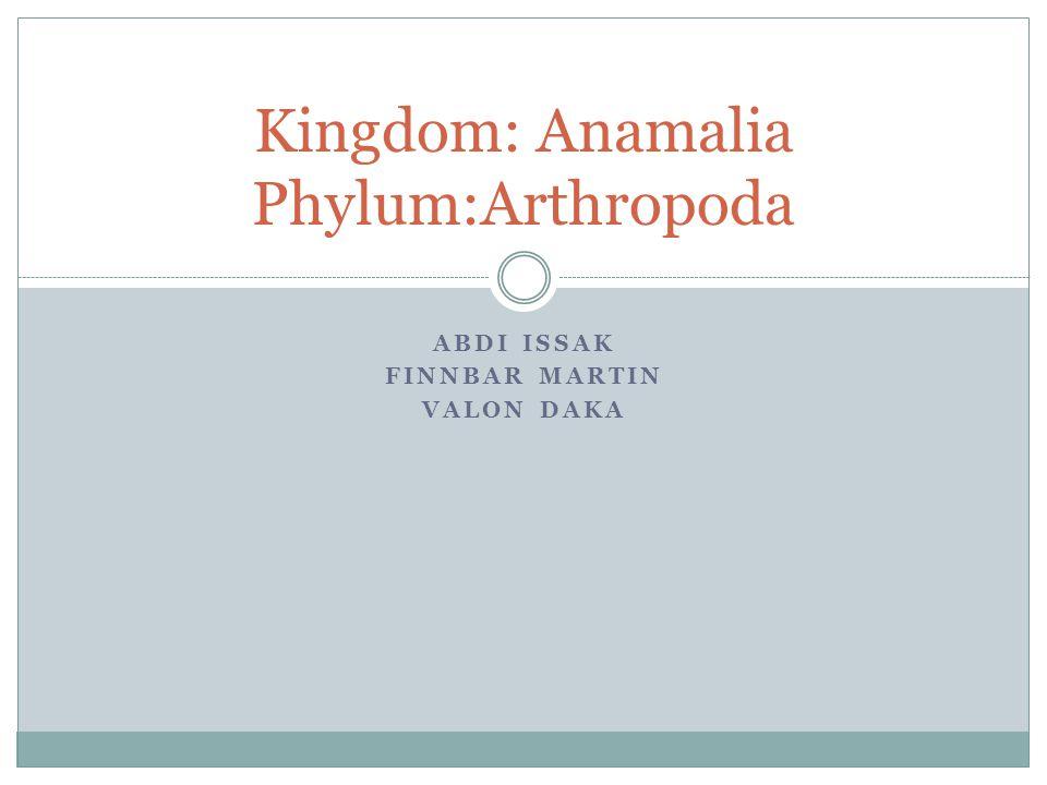 ABDI ISSAK FINNBAR MARTIN VALON DAKA Kingdom: Anamalia Phylum:Arthropoda