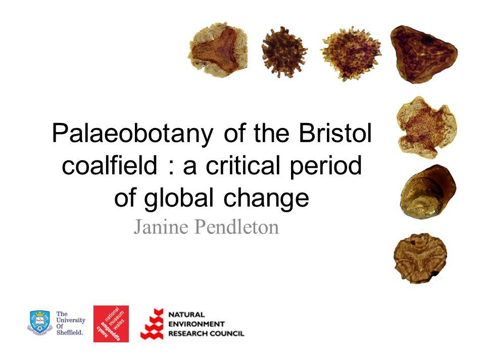 Palaeobotany of the Bristol coalfield : a critical period of global change Janine Pendleton