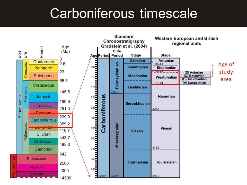 Carboniferous timescale Age of study area ?