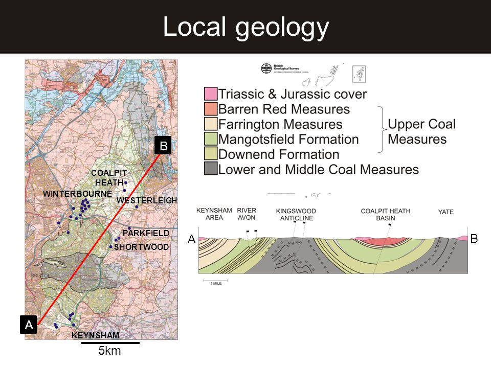 B A COALPIT HEATH WINTERBOURNE PARKFIELD SHORTWOOD WESTERLEIGH KEYNSHAM Local geology 5km A B
