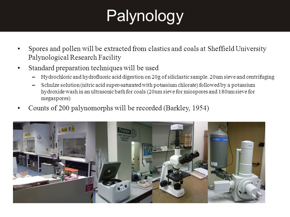 Palynology Spores and pollen will be extracted from clastics and coals at Sheffield University Palynological Research Facility Standard preparation te
