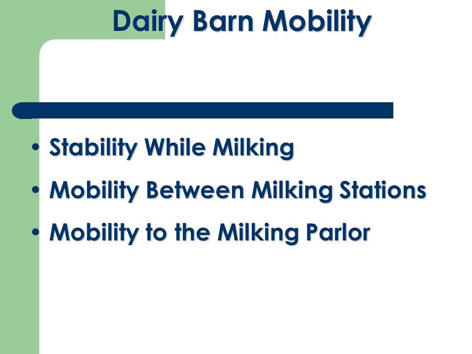 Stability While Milking Stability While Milking Mobility Between Milking Stations Mobility Between Milking Stations Mobility to the Milking Parlor Mobility to the Milking Parlor Dairy Barn Mobility