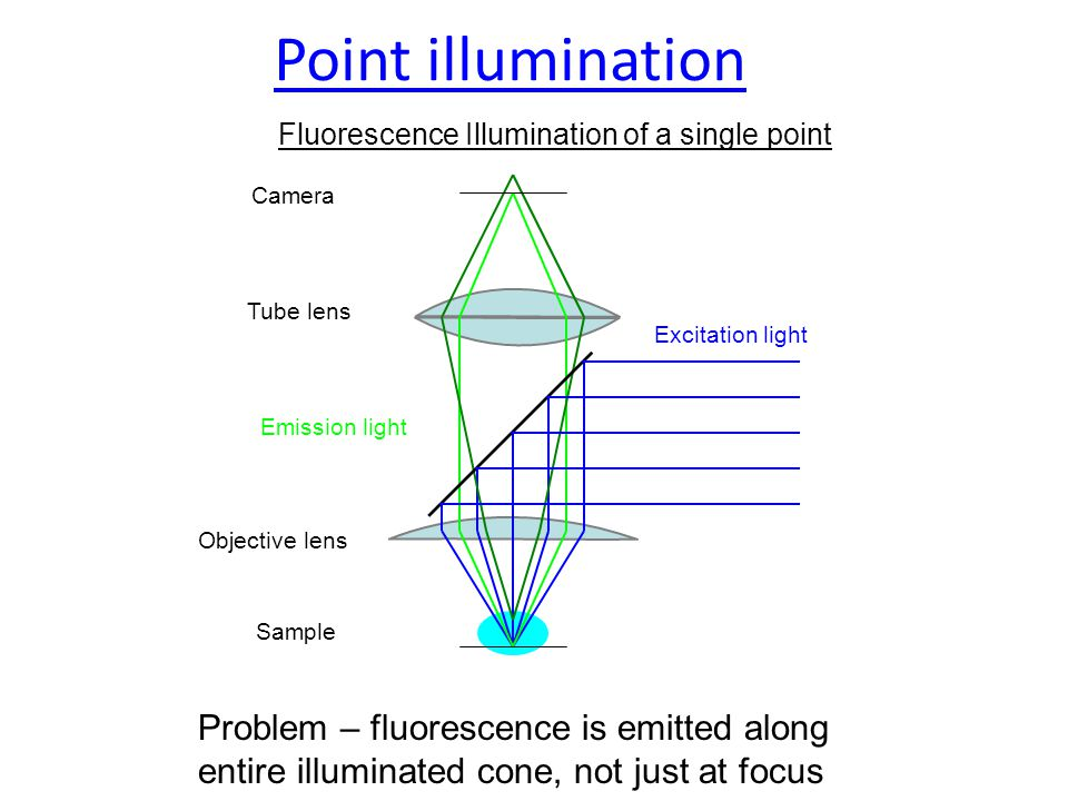 Fluorescence Illumination of a single point Sample Objective lens Excitation light Tube lens Emission light Problem – fluorescence is emitted along entire illuminated cone, not just at focus Camera Point illumination