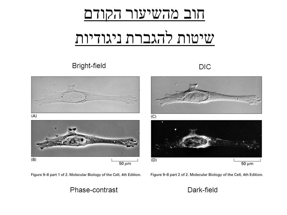 חוב מהשיעור הקודם Bright-field DIC Phase-contrastDark-field שיטות להגברת ניגודיות
