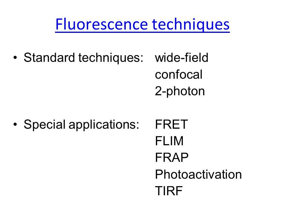 Fluorescence techniques Standard techniques:wide-field confocal 2-photon Special applications:FRET FLIM FRAP Photoactivation TIRF