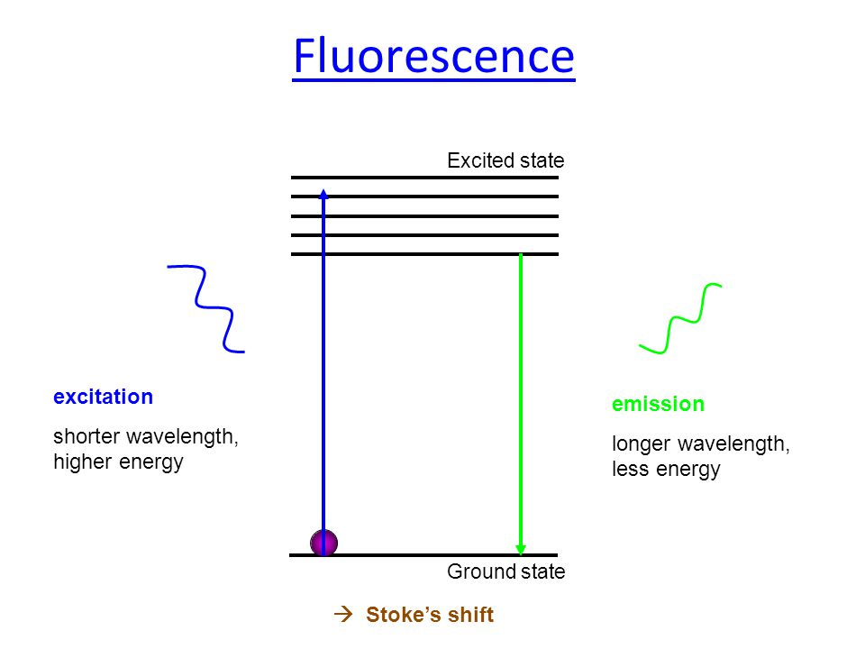 DisadvantagesAdvantages Free fluorophors can mask energy transfer Cheap implementation pH sensitivehigh resolution (1-10nm) Weak effectLiving cells Location of fluorophors is critical Real time FRET
