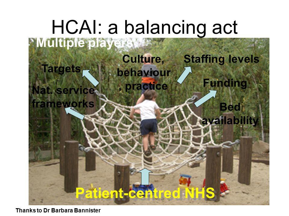 HCAI: a balancing act Staffing levels Funding Targets Nat.